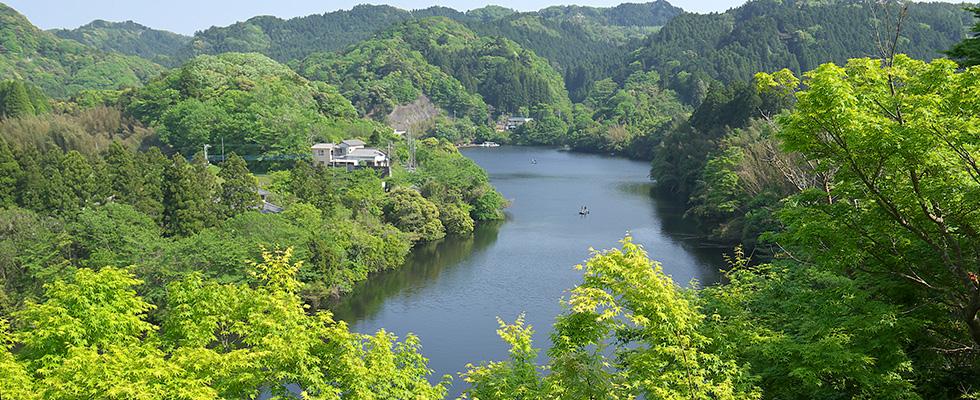 入江を渡る橋ごとに違う風景が待っています